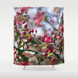 RED APPLE BLOSSOMS Shower Curtain