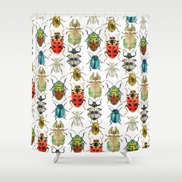 Beetle Compilation Shower Curtain