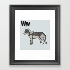grey wolf Framed Art Print