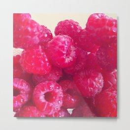 Fresh raspberries. Metal Print