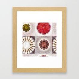 Tugger K-Naked Flower  ID:16165-025113-38800 Framed Art Print