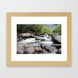 Hawaiian River Framed Art Print