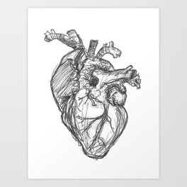 Anatomical Heart Ink Sketch Art Print