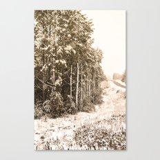 Winter Roadside Canvas Print