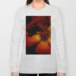 Tawny Autumn Roses Long Sleeve T-shirt