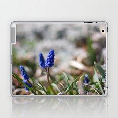 Grape Hyacinth II Laptop & iPad Skin