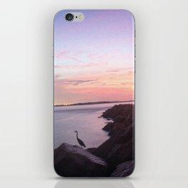 Destin Pass Panorama iPhone Skin