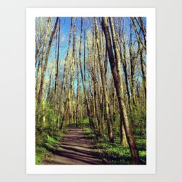 footpath  Art Print