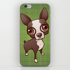 Zippy the Boston Terrier iPhone & iPod Skin