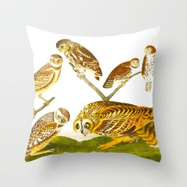 Burrowing Owl Illustration Throw Pillow