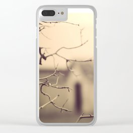 I retrace my steps.... Clear iPhone Case