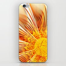 Summer Fractal Flower iPhone & iPod Skin
