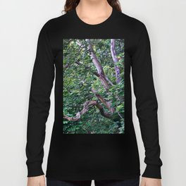 An Old Branch Long Sleeve T-shirt