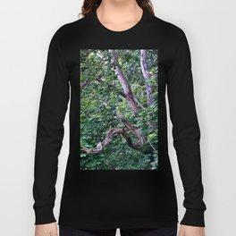 An Old Branch Long Sleeve T-shirt