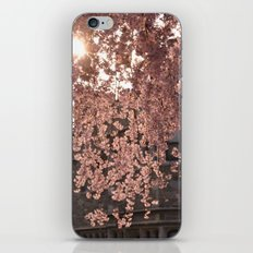 Little Branches iPhone & iPod Skin