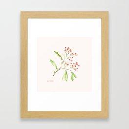 Firethorn Framed Art Print