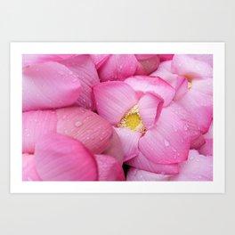 pink petals #society6 #decor #buyart Art Print