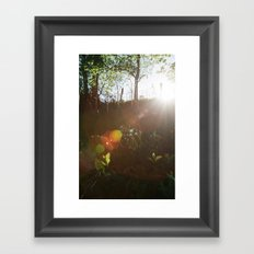 Lee Wood Framed Art Print