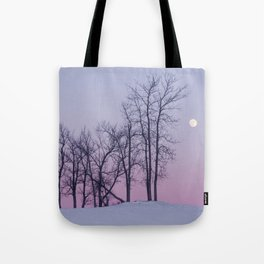 Winter comes to Sandbanks Tote Bag