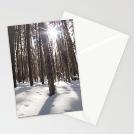 Yellowstone National Park - Lodgepole Forest 2 Stationery Cards