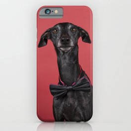 A brown Italian greyhound dog with a bowtie against a red background iPhone Case