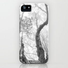 Cedro Forest. Dream Woods. Bw iPhone Case