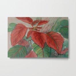 Poinsettia WC161122g Metal Print