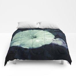 Morning Glory Comforters