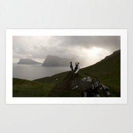 Faroe Islands puffins Art Print