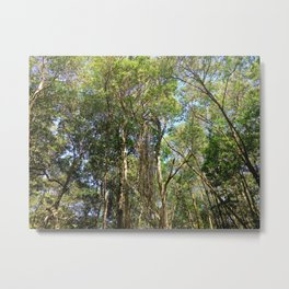 Trees in the Wild Metal Print