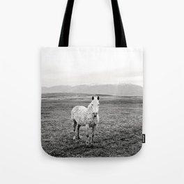 Appaloosa Horse | Western Art Tote Bag