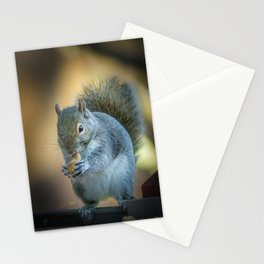 Squirrel and the peanut Stationery Cards