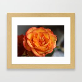 Roses are..... Framed Art Print
