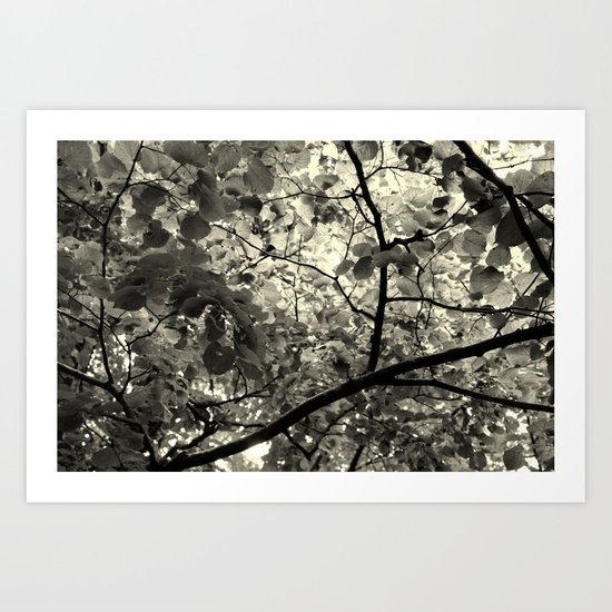 Monochrome Leaf's  Art Print