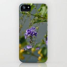 In the Distance iPhone Case