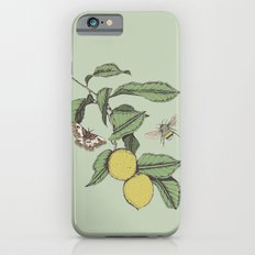 Lemons in Spring iPhone 6s Slim Case