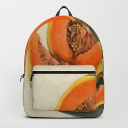 Vintage Vector Style Thanksgiving Pumpkin Slices Backpack