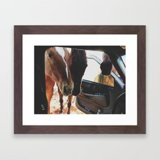 Car Horses Framed Art Print