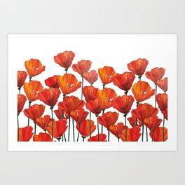 Poppies! Art Print