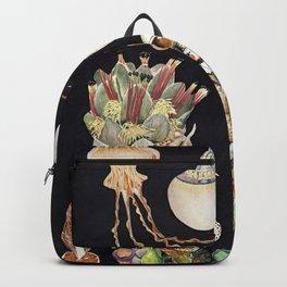 Planetary Exploration Backpack