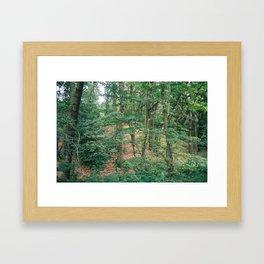 P_01 Framed Art Print