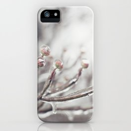 Icy Branches #1 iPhone Case