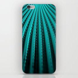 Water Rails iPhone Skin