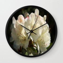 Beautiful Spring Pastel Wall Clock
