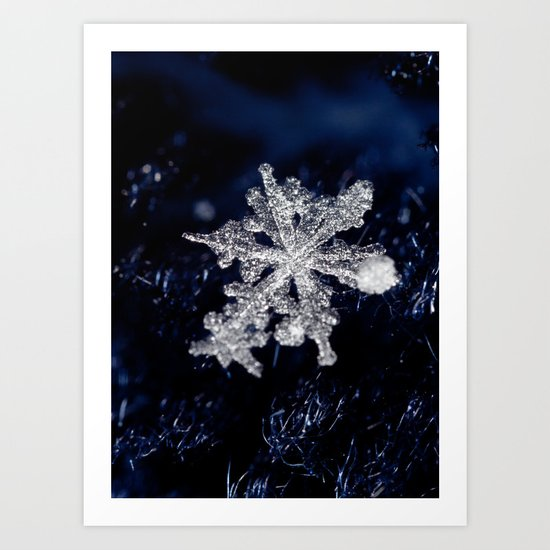 Winter Joy III Art Print