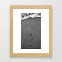 Journey to a New World Framed Art Print