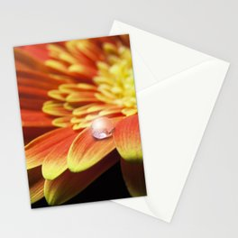 Macro of a water drop on orange gerbera flower with lens flare. Stationery Cards