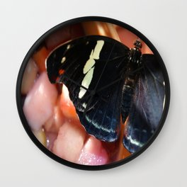 Flutter By Wall Clock