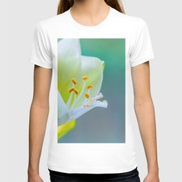 White Flower Against Teal Turquoise Background T-shirt