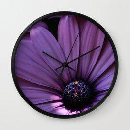 Osteospermum Wall Clock